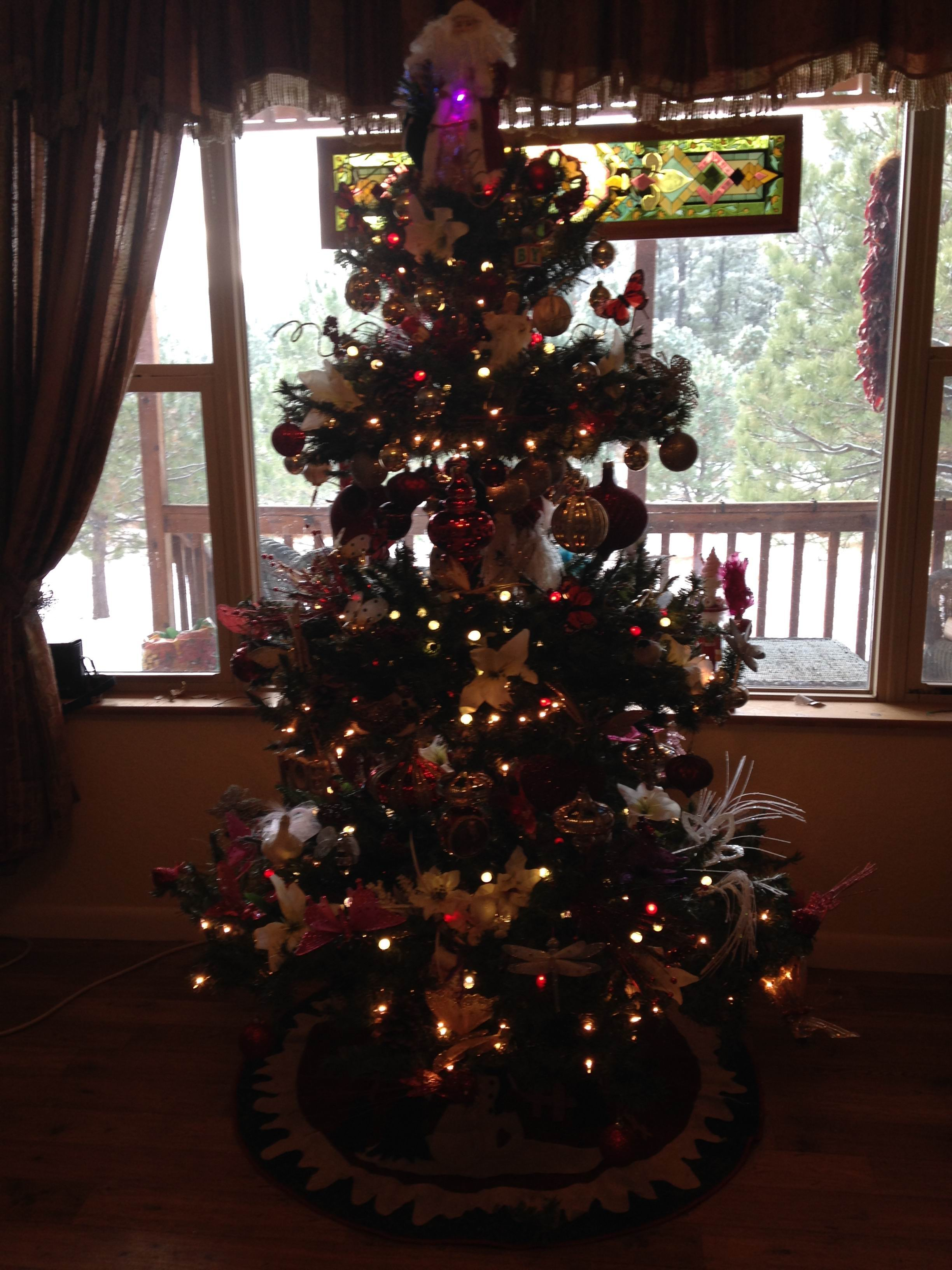 Oh Christmas Tree (again, again, and again) | life is a bowl of kibble